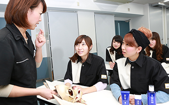 pic_2nd_souou_advisermake